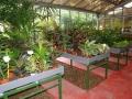 venta-plantas-interior-barcelona-baix-llobregat