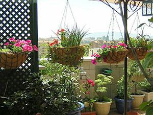 C mo transformar peque os espacios en jardines centro for Jardines para espacios pequenos