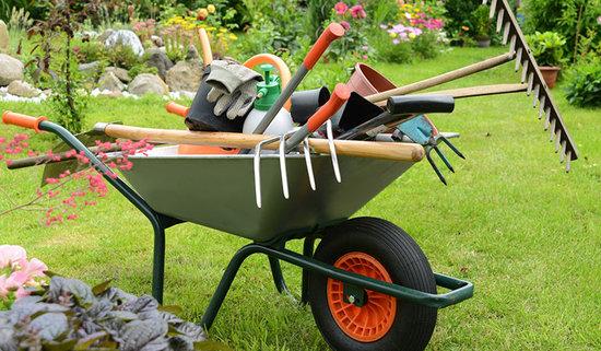 Tenemos todo lo que necesitas para el cuidado de tus plantas y jardín esta primavera.