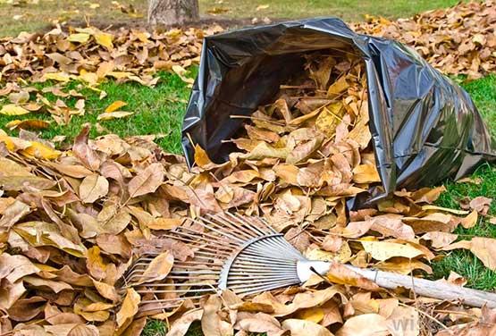 agenda-trabajos-jardin-noviembre-2015