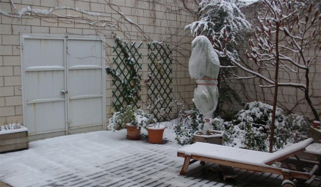 Seis consejos para cuidar tus plantas en invierno