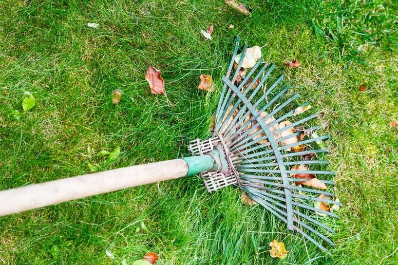 rastrillar-hojas-cesped