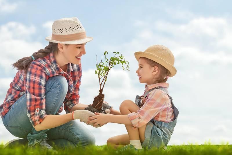 Jardinería con los más pequeños: una actividad muy gratificante
