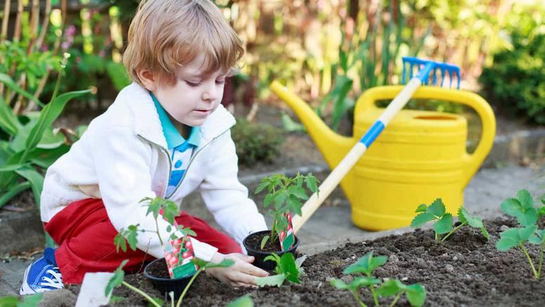 jardineria-con-ninos