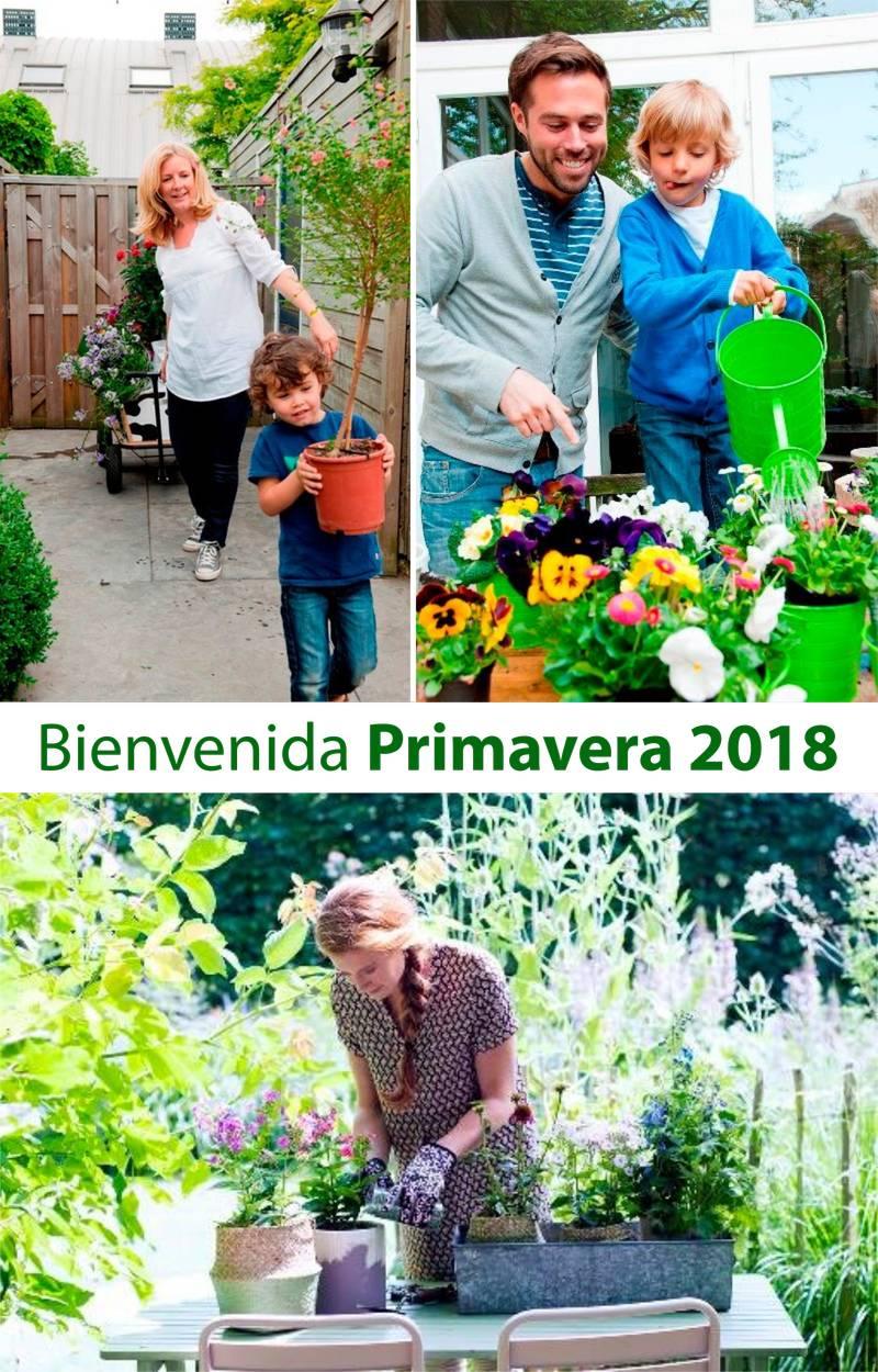 Plantas y jard n archivos centro de jardiner a s nchez for Jardineria barcelona centro